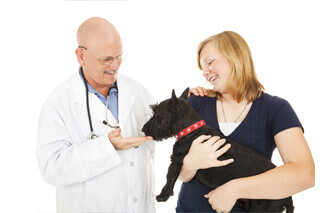 Wheatfield Animal Hospital, North Tonawanda, NY